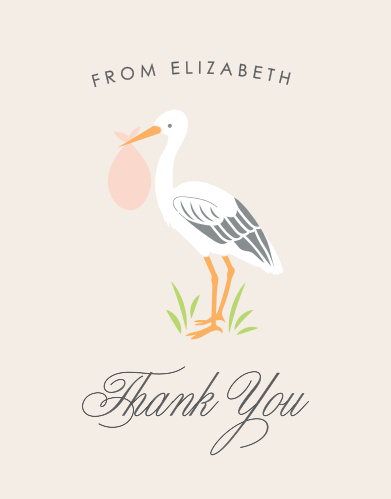 Stoked Stork Baby Shower Thank You Cards