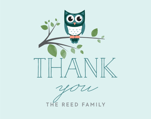 Night Owl Thank You Cards