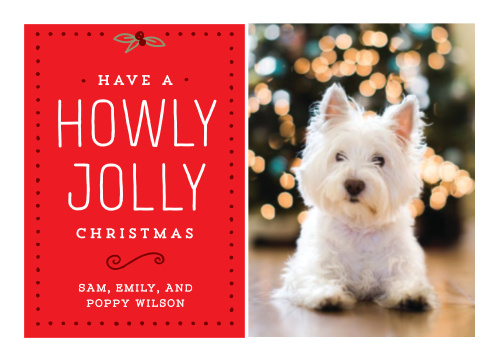 Dogs Holiday Cards Match Your Color Style Free