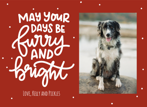 Dog Christmas Cards Match Your Color Style Free