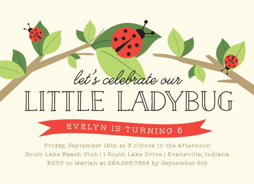 Little Ladybug Childrens Birthday Party Invitations
