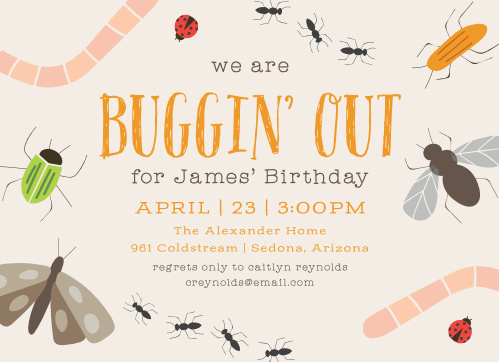 Bugs Insects Childrens Birthday Party Invitations