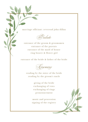 Fun Wedding Programs Match Your Color Style Free