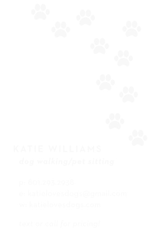 Dog Walking Business Cards Match Your Color Style Free