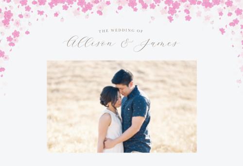 Cherry Blossoms Website