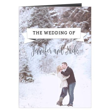 The Contemporary Banner Wedding Programs