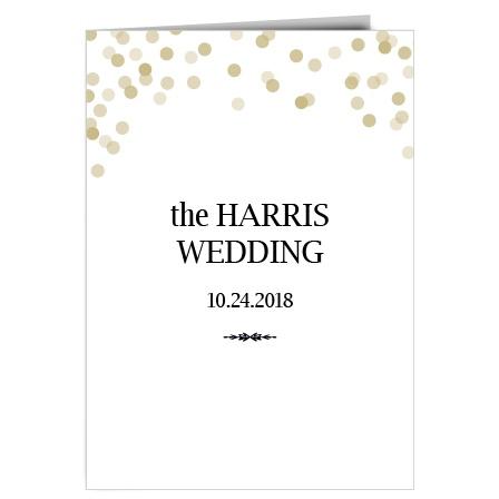 Glamorous Confetti Wedding Program