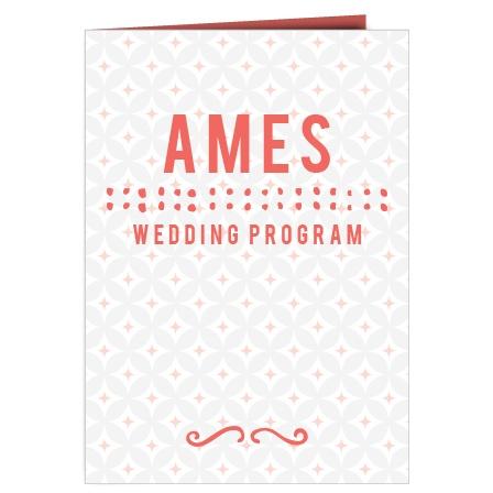 The Fairy Tale Beginning Wedding Program