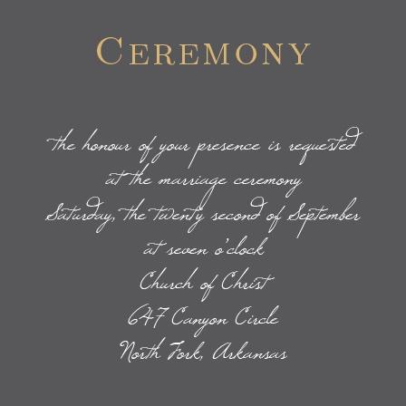 Illustrated Rose Foil Ceremony Cards