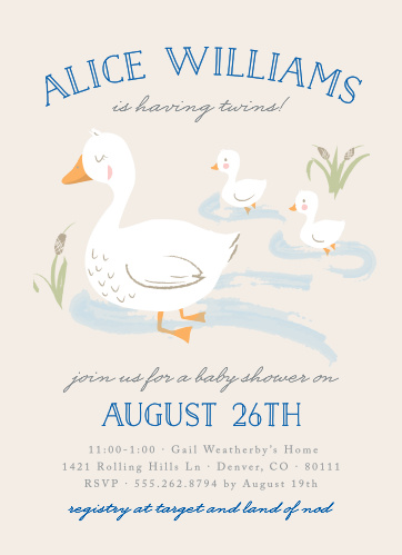 Baby Shower Invitations For Twins Basic Invite